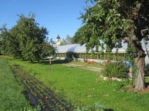 Naturland-Gärtnerei Schönbrunn