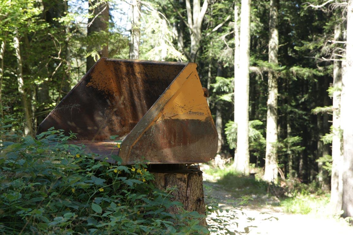 Schaufel auf Baumstumpf