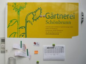 Gärtnerei Schönbrunn Pinnwand